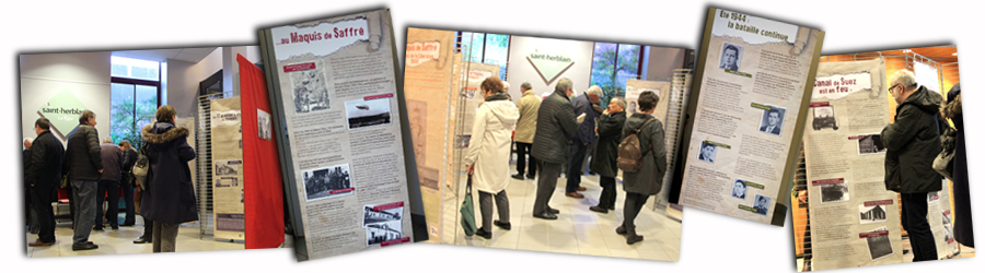 Nos actions : l'exposition